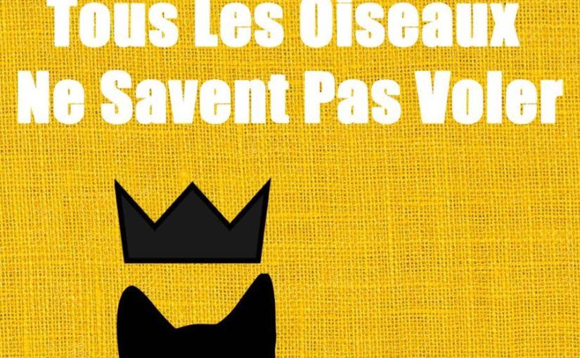 Livre: «TOUS LES OISEAUX NE SAVENT PAS VOLER» Premier roman de DjamZerrifi