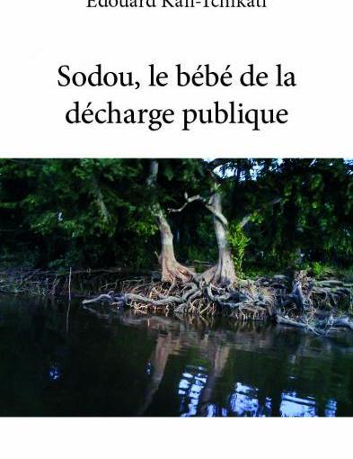 Critique littéraire: Sodou, le bébé de la décharge publique vue par EmeraudeKouka